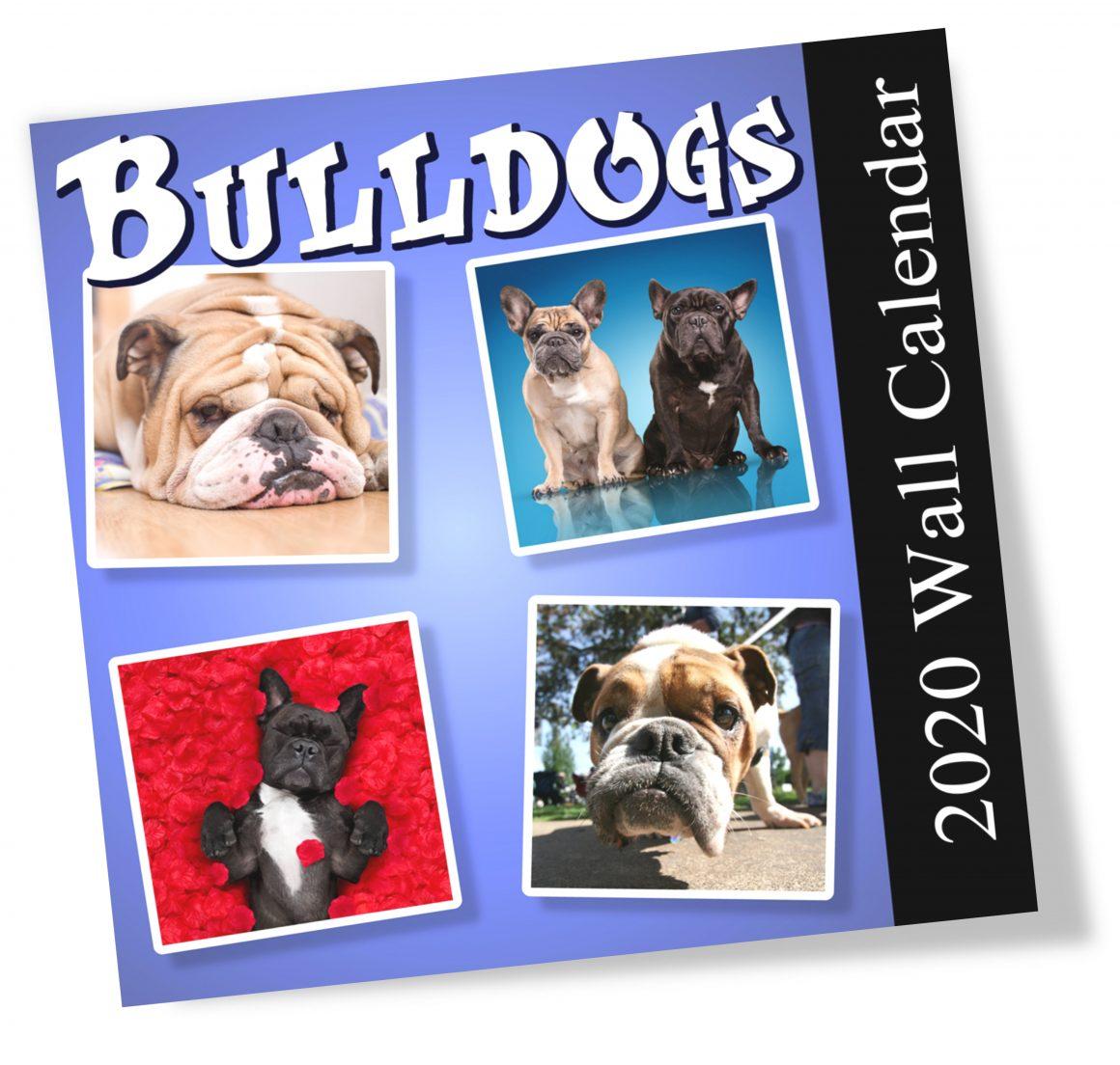 bulldog - 01